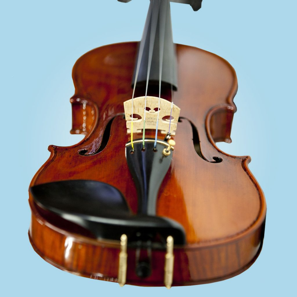 Violin stringed musical instrument.